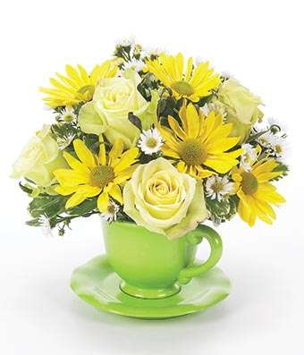 Green Tea Daisy Rose - Fine Gifts La Bella Basket Company