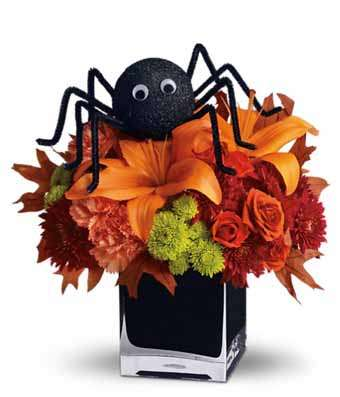 Spooky Sweet spider