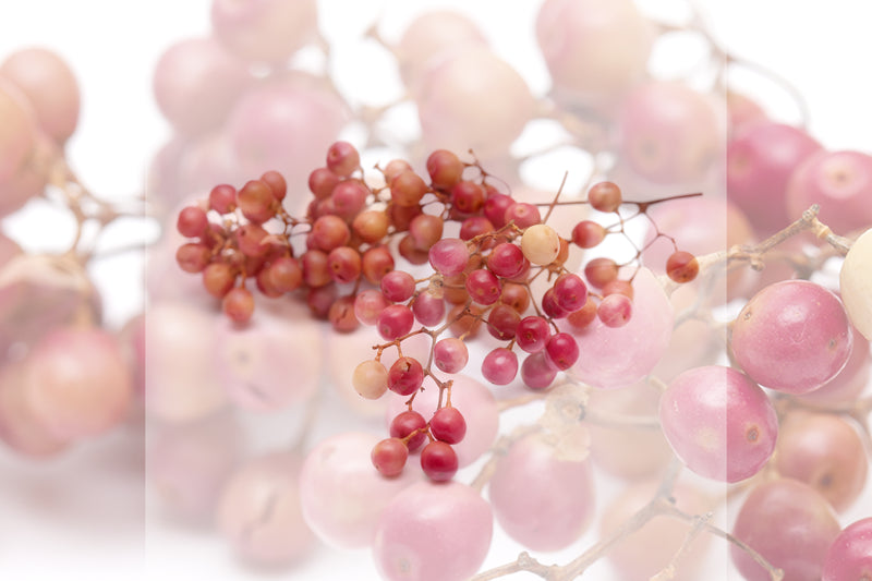 Ingredient Spotlight: Pink Peppercorn