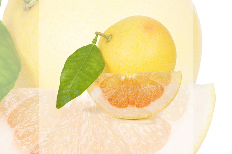 Ingredient Spotlight: White Grapefruit