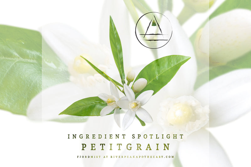 Ingredient Spotlight: Petitgrain