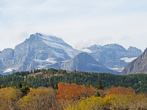 Glacier National Park - Innovations Designer Home Decor