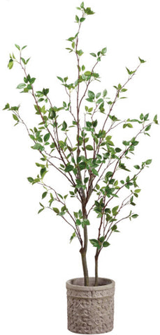 Lifelike 5' Cornus Tree - Innovations Designer Home Decor