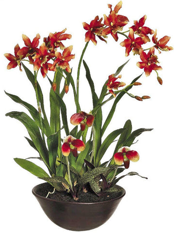 Lifelike Burnt Orange Oncidium Orchid Arrangement in Decorative Bowl