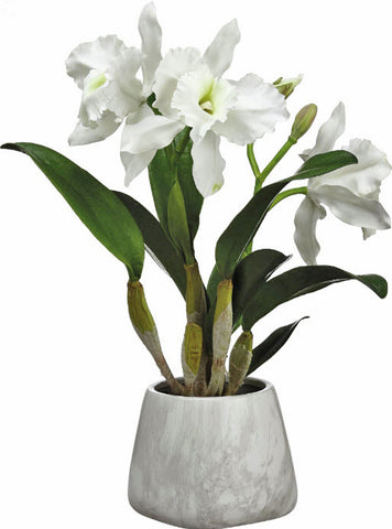 Lifelike Cattleya Orchid Floral Arrangement - Innovations Designer Home Decor