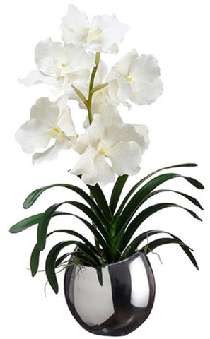 Lifelike White Vanda Orchid - Innovations Designer Home Decor