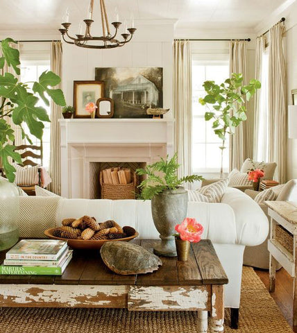 Living Room with Plants & Rustic Furniture - Innovations Designer Home Decor
