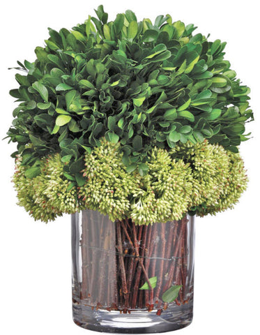 Preserved Boxwood Arrangement in Twig Filled Glass Vase - Innovations Designer Home Decor
