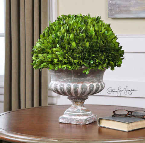 Preserved Boxwood Garden Urn - Innovations Designer Home Decor