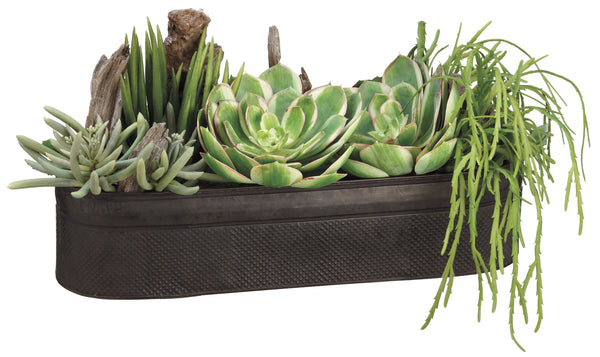 Lifelike Succulent Arrangement In Oval Decorative Container