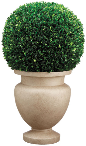 Lifelike Preserved Boxwood Ball Topiary in Decorative Footed Planter