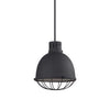 Dayton Farmhouse 1 Light Textured Black Pendant Lighting Fixture by Uttermost