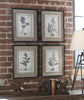Casual Grey Study Botanical Framed Art Prints, 4-Piece Set