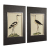 Birds on the Shore Coastal Framed Prints, 2-Piece Set