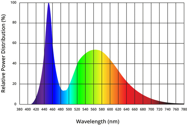 Daylight white High Luminance LED Spectral power distrubution