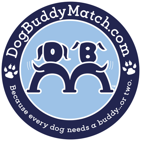 Dog Buddy Match Car Magnets