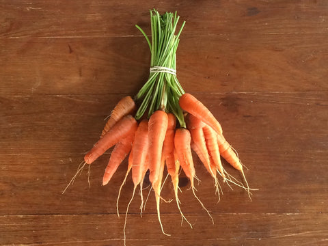 Carrots (1 pound bundle)