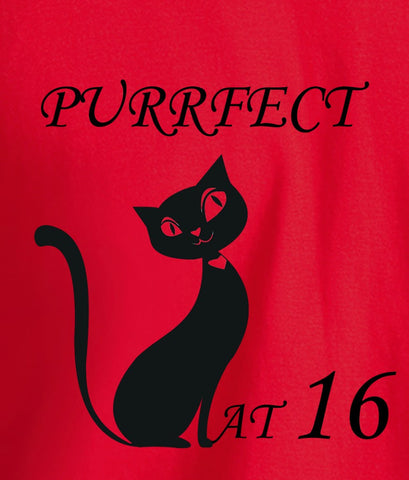 Top Cat T Shirt - perfect at 16
