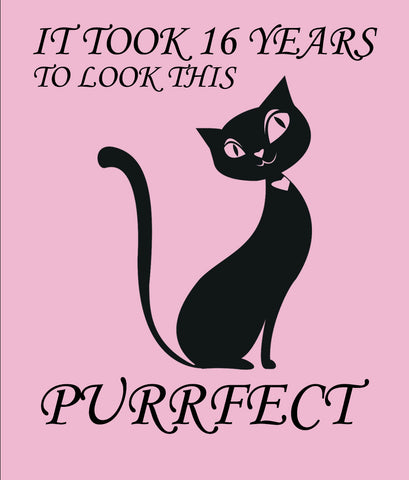 black-cat-t-shirt-16th-birthday pink