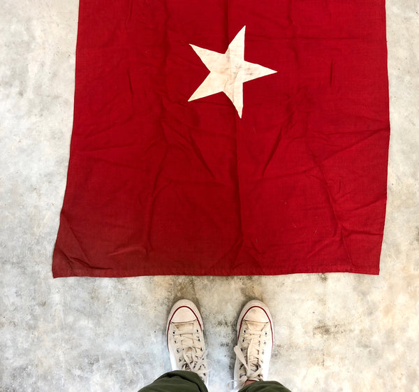 PERSONAL COLLECTION: RARE VINTAGE JANE LONG LONE STAR FLAG (read description)