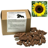 Sunflower Guerrilla Droppings (Helianthus annuus, Black Oil) - Seed-Balls.com  - 1