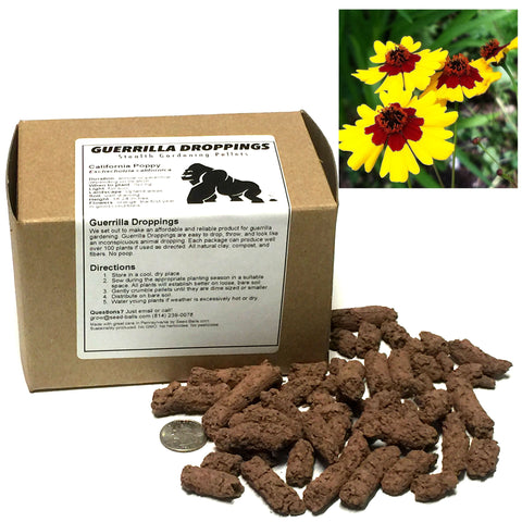 Plains Coreopsis Guerrilla Droppings (Coreopsis tinctoria) - Seed-Balls.com  - 1