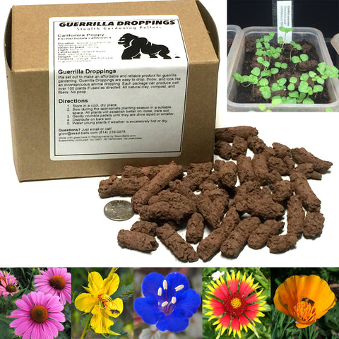 Custom Guerrilla Droppings (Native to YOUR zipcode!) - Seed-Balls.com  - 1