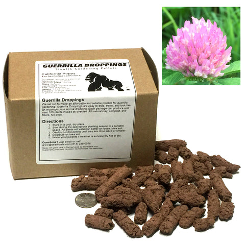 Red Clover Guerrilla Droppings (Trifolium pratense) - Seed-Balls.com  - 1