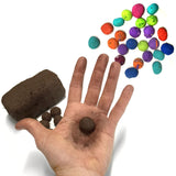 SPLAT! Deluxe Seed Ball Color Kit - Colors and ready-to-use seed ball matrix