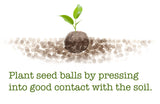 Seed Ball Matrix - Seed-Balls.com  - 3