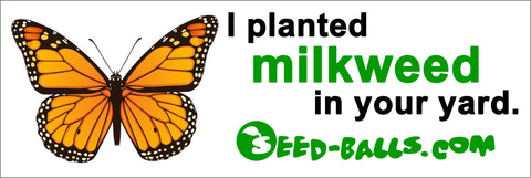 I planted milkweed in your yard. Bumper Sticker. - Seed-Balls.com  - 1
