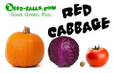 Cabbage Seed Balls (Red Acre) - Seed-Balls.com  - 6