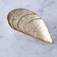 Glass Cracked Gold Foil - Large Pina Shell