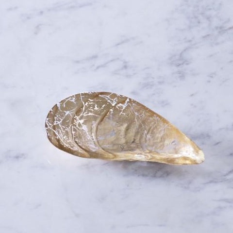Glass Two Piece Cracked Gold Foil - Small Pina Shell