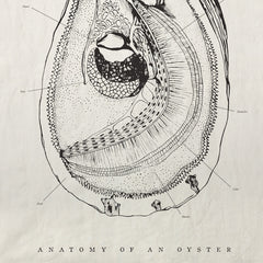 Anatomy of an Oyster Pure Linen Tea Towel