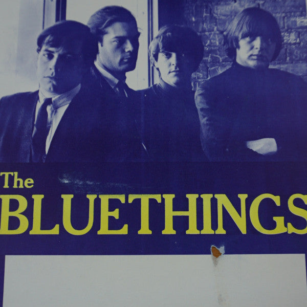 The Bluethings - Vintage tour poster limited edition punk folk Kansas