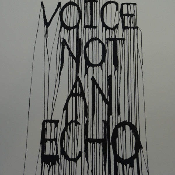 Be A Voice Not An Echo - 2015 Hijack poster street art Brainwash