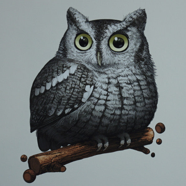 Fat Bird - 2016 Mike Mitchell Eastern Screech Owl poster/print