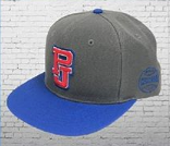 Pearl Jam - 2018 Balk Snapback Hat The Home Away Shows Chicago Wrigley Field