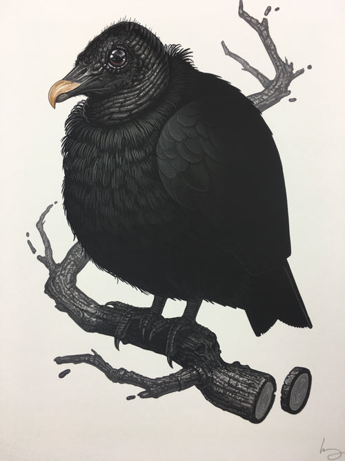 Black Vulture - 2017 Mike Mitchell Art Print limited edition