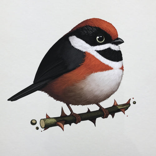 Fat Bird - 2017 Mike Mitchell Black Throated Bushtit poster/print