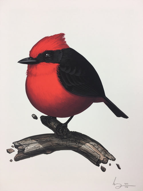 Vermillion Flycatcher - 2017 Mike Mitchell Art Print