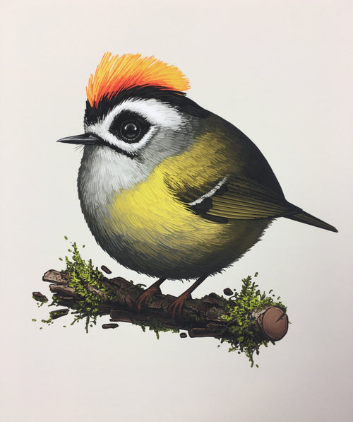 Fat Birds Flamecrest - 2018 Mike Mitchell Art Print
