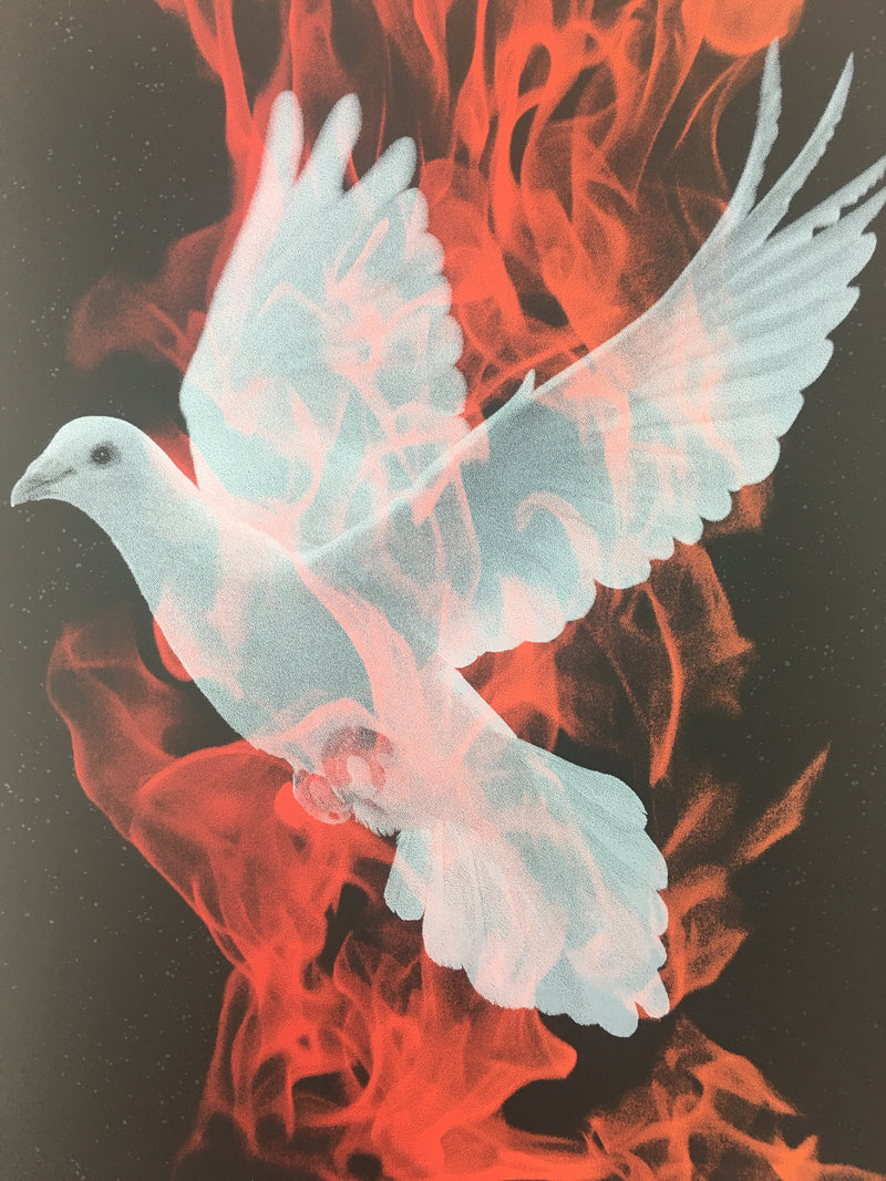 Birth of a Phoenix #1 - 2010 Todd Slater Poster Art Print