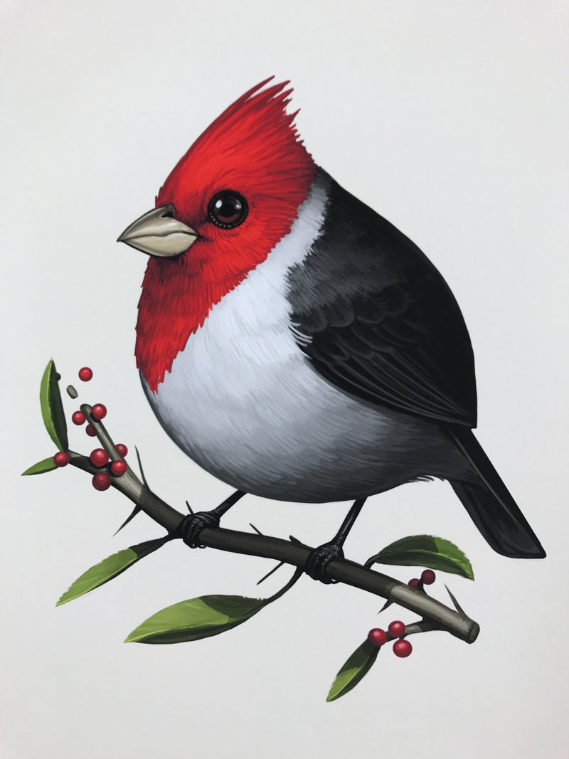 Fat Bird - 2017 Mike Mitchell Red-Crested Cardinal poster AP Signed