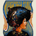 Widespread Panic - 2015 Zeb Love Poster Red Rocks Morrison, CO