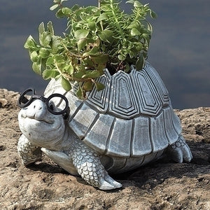 Roman - Turtle With Glasses Planter – Garden – 10094