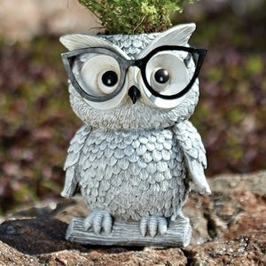 Roman - Owl With Glasses Planter – Garden – 10095