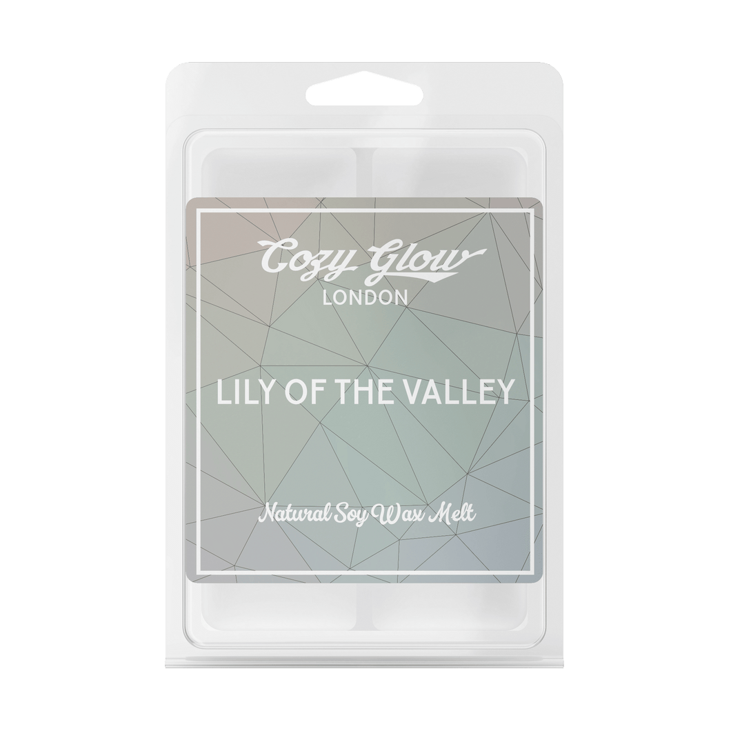 Cozy Glow Lily of the Valley Soy Wax Melt