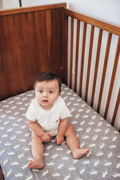 Premium Knit Fitted Crib Sheet - Scout